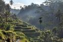 МАЛАЙЗИЯ - СИНГАПУР с остров Сентоса - ИНДОНЕЗИЯ с островите Бали и Ява! Вълнуващо пътешествие на границата между два океана.